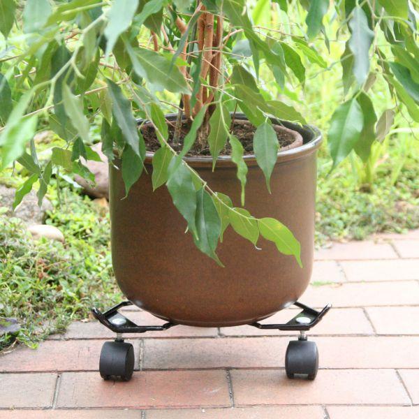 Pflanzenroller Ø: 38cm, 60 kg