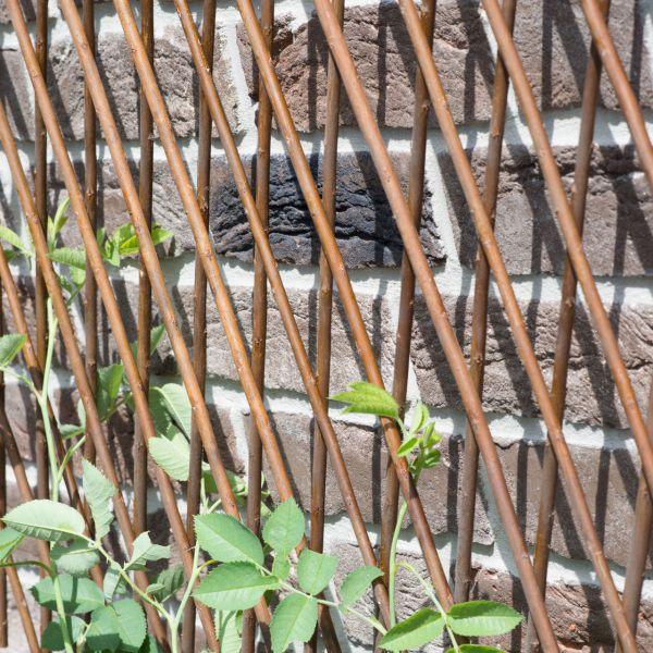 Weidenrankgitter Spalier, ausziehbar (max. 120x180cm)