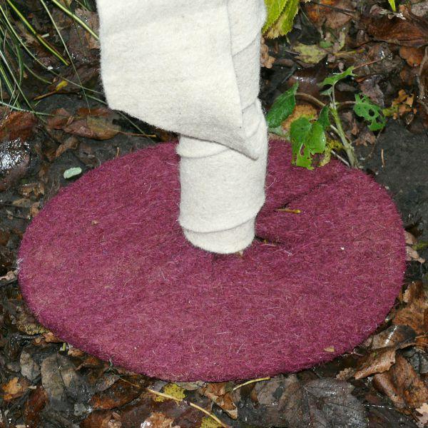 Kokosmatte rund Winterschutz für Kübelpflanzen  mit Loch waldbeere