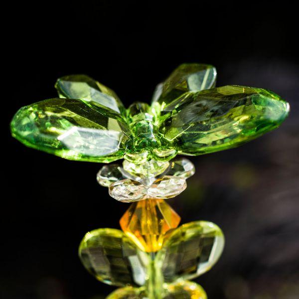 Dekostecker Acryl Schmetterling, grün/orange