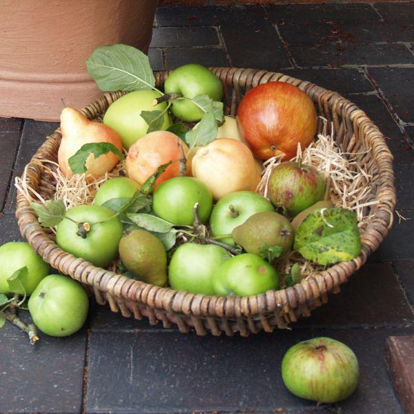 Weidenkorb Corona, natur