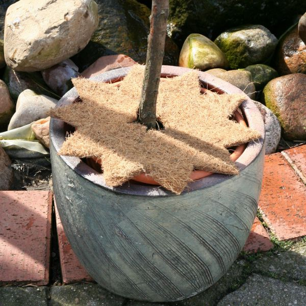 Winterschutz-Kokosmatte Stern mit Loch natur