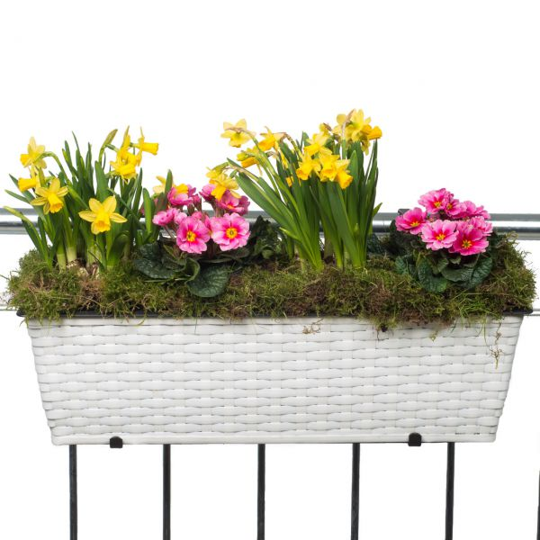 Balkonkasten Polyrattan inkl. Halter & Bewässerungssystem, weiß