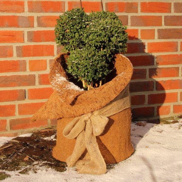 Winterschutzmatte Kokosmatte natur