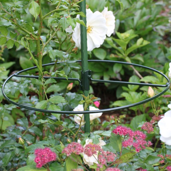 Metall-Pflanzenring, zum Klemmen