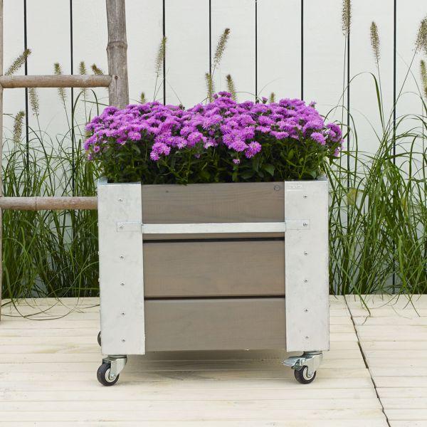Mobiler Blumenkasten Cubic M Quadrat, H:45cm