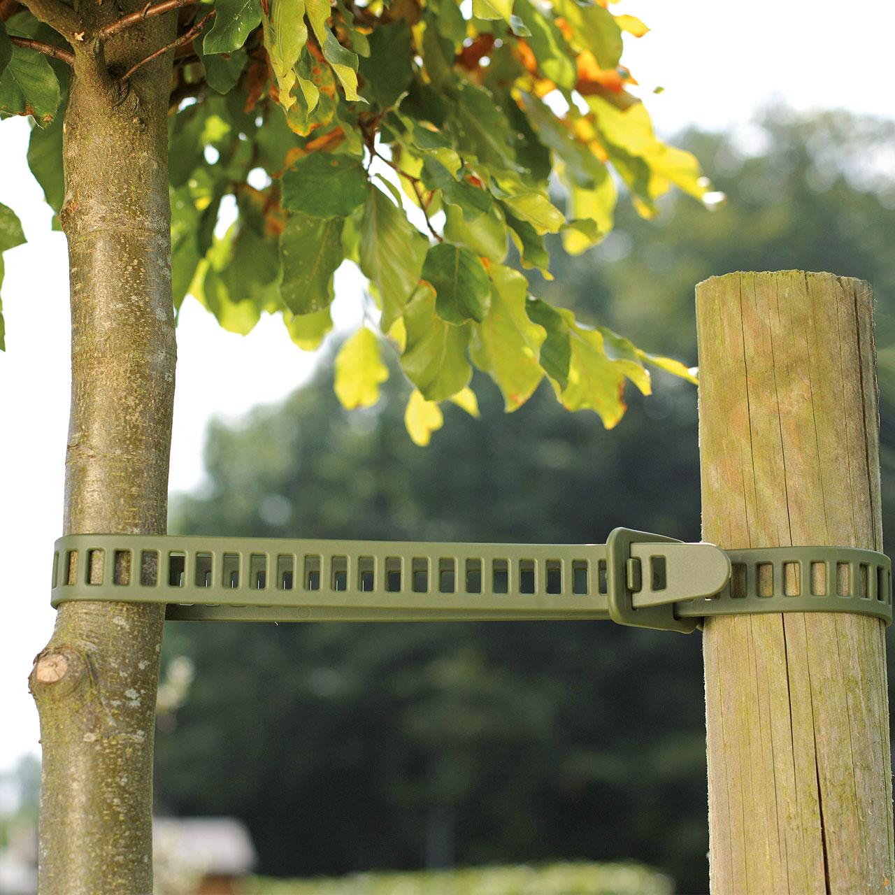 Befestigungs & Bindematerial für Pflanzen