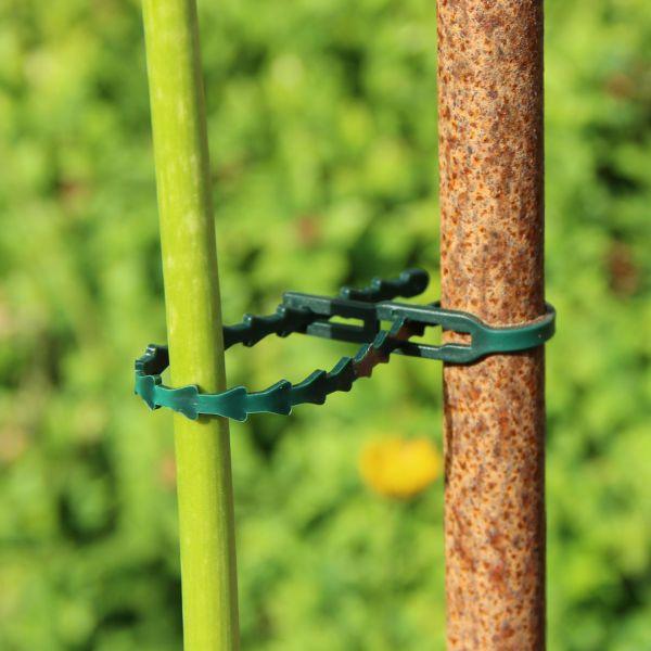 Pflanzenbinder Kunststoff, grün