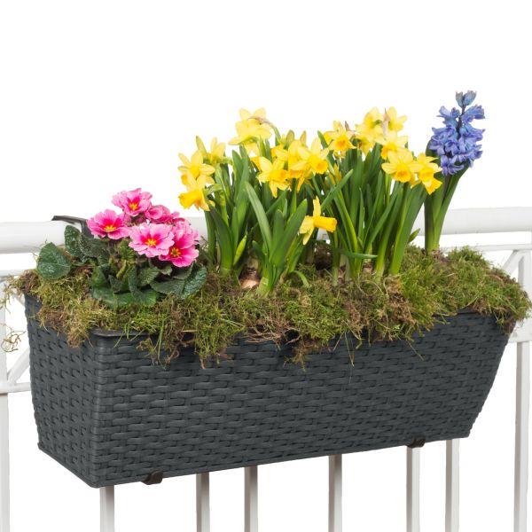 Balkonkasten Polyrattan inkl. Halter & Bewässerungssystem, anthrazit